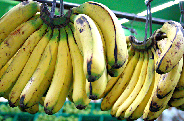Banana How To I.D. Genetically Modified Food at the Supermarket