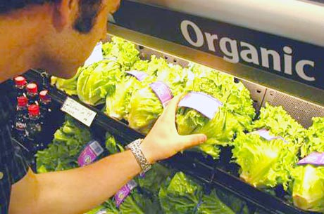 Organic Food Chinese Party Officials Maintain Secret Organic Gardens