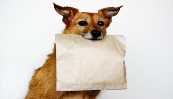Dog Food Is More Nutritious Than School Lunches