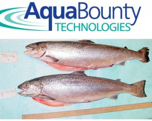 AquaBounty Technologies
