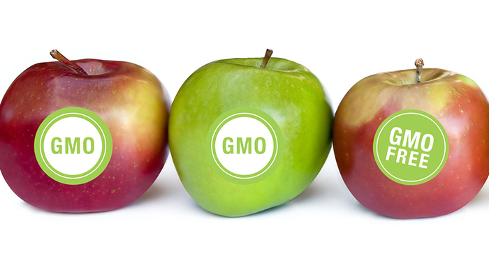 Proper-Labeling-of-GMO-Food